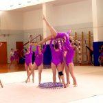 Художественная гимнастика (6)