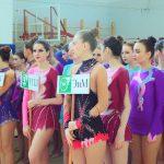 Художественная гимнастика (1)