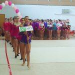 Художественная гимнастика (2)